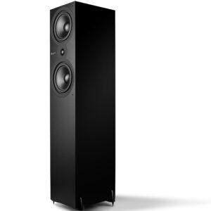 Cambridge Audio, SX-80, Altavoz